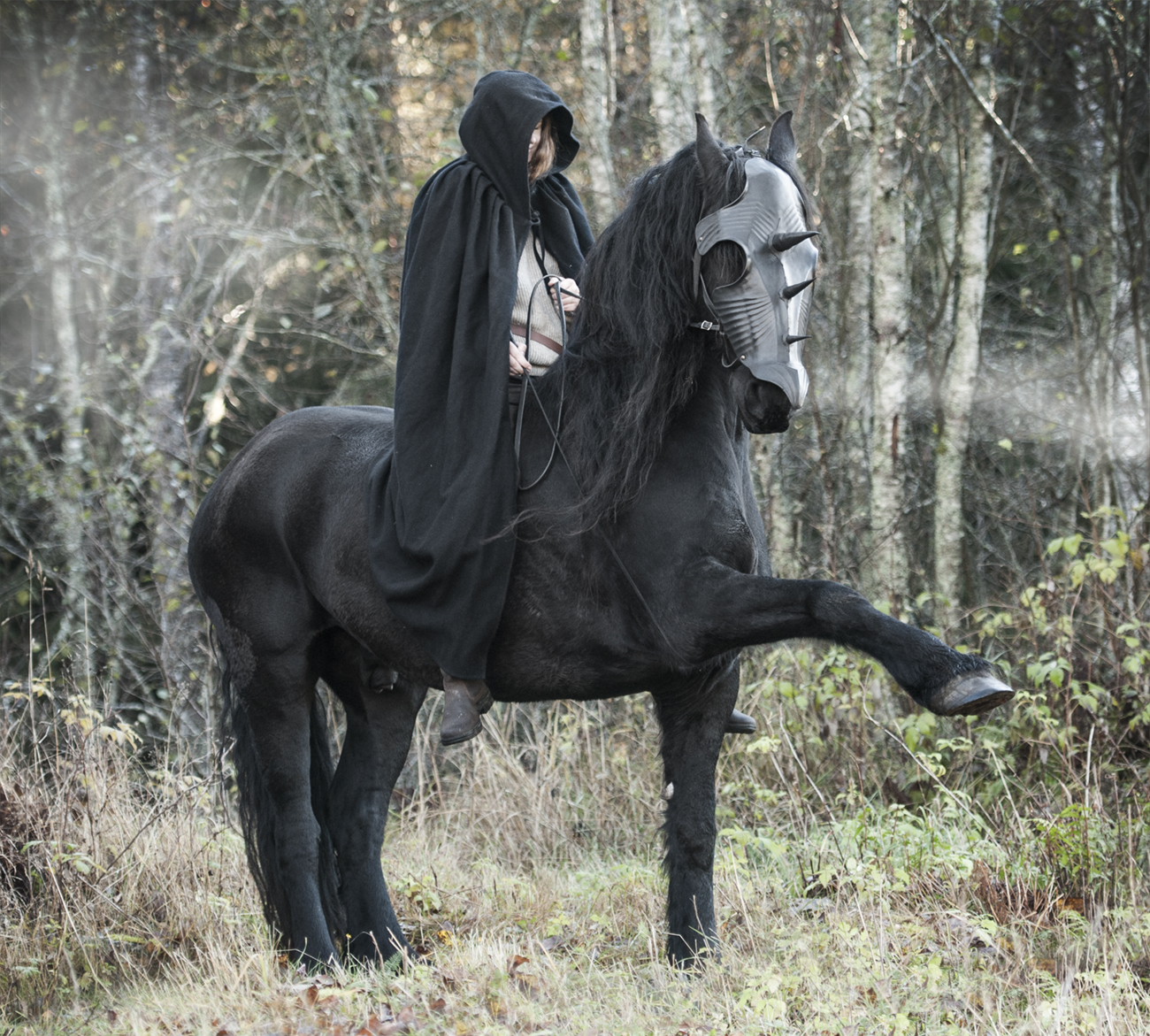 Black Horses In Lord Of The Rings