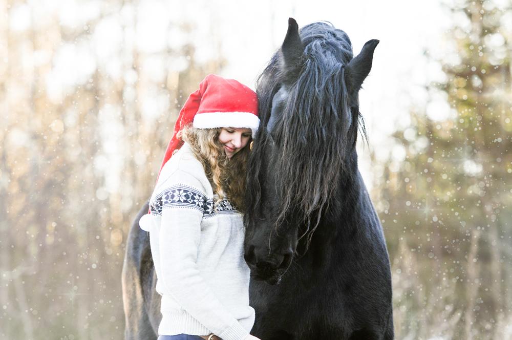 matildebrandt_christmas9