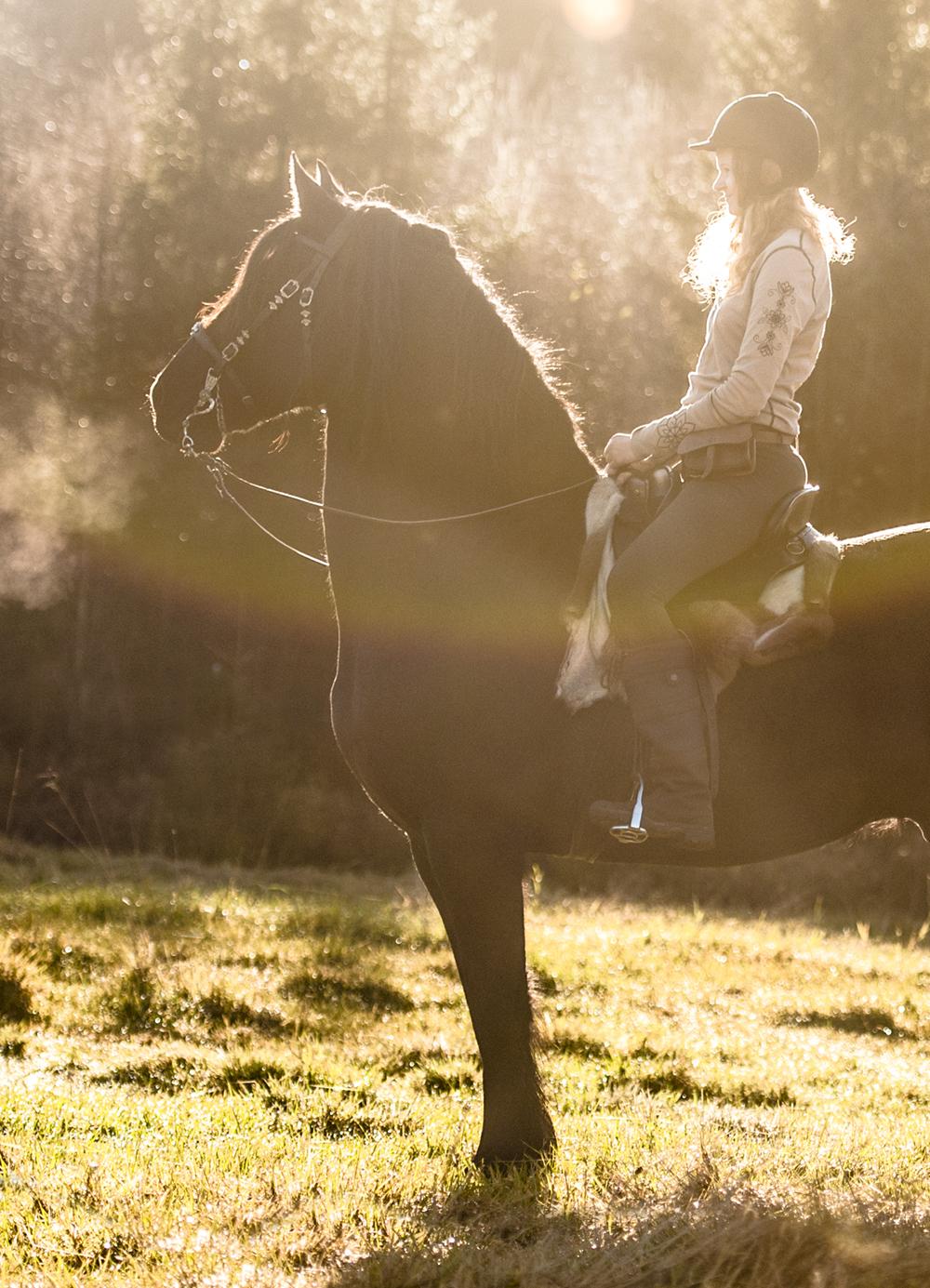 friesian hesteblogg matilde brandt10