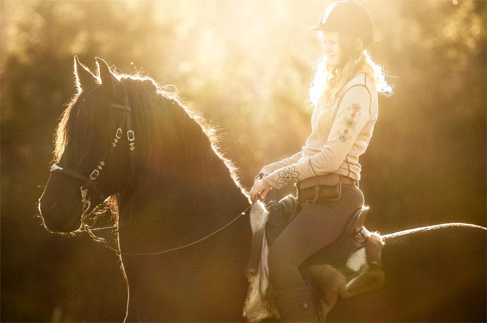 friesian-hesteblogg-matilde-brandt8