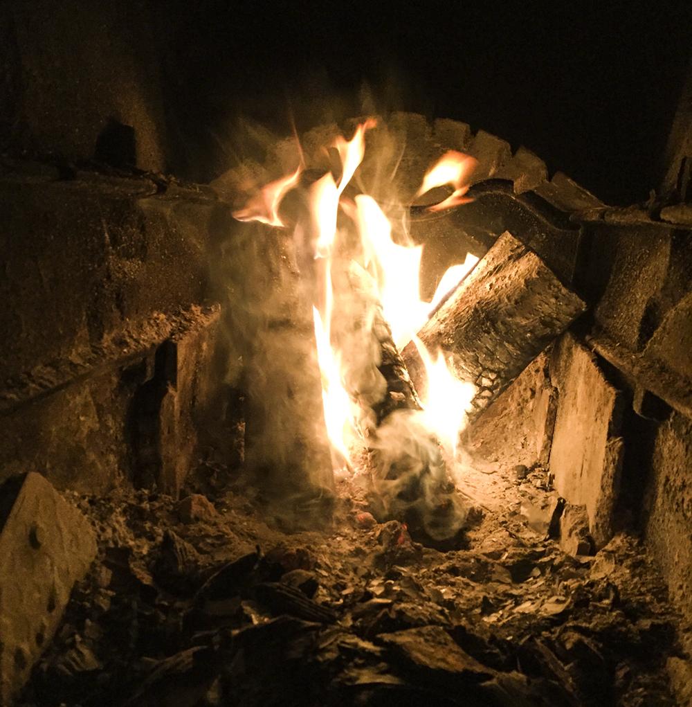 miina anahita matilde brandt4