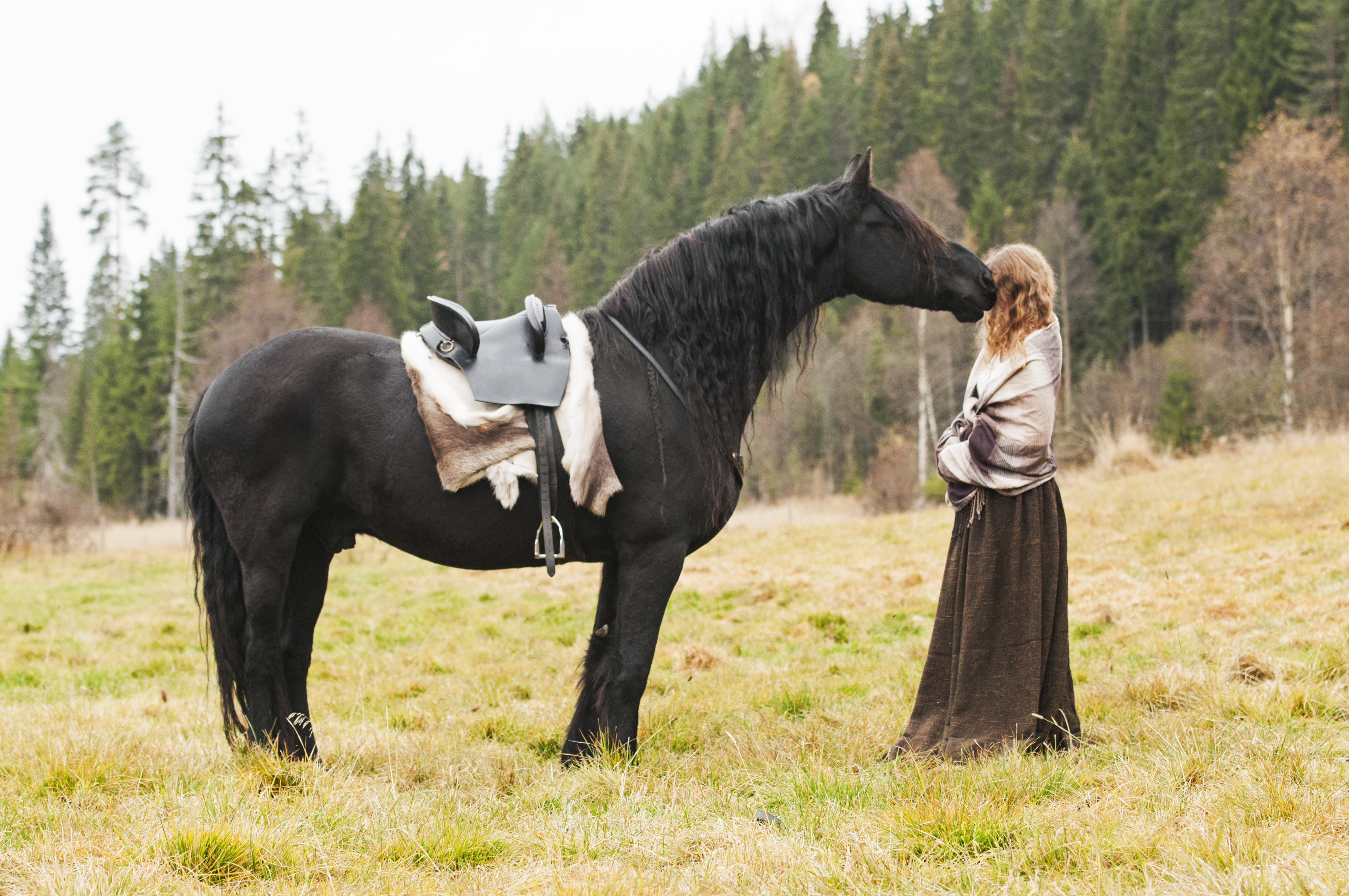 outlander_photoshoot_friesian26