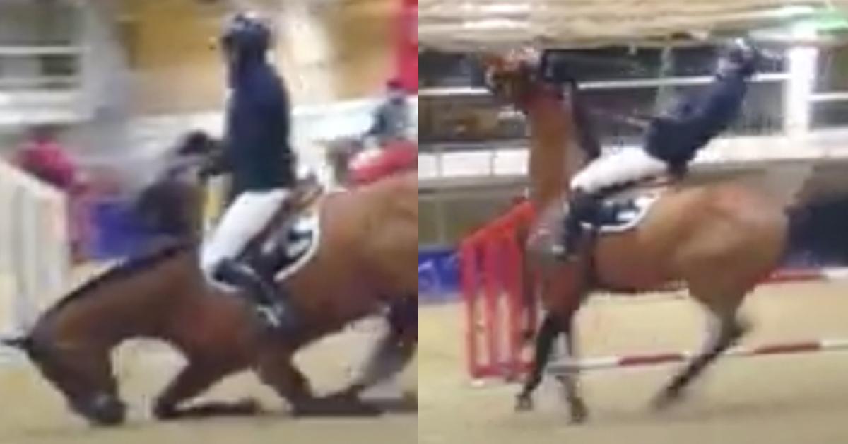 gothenburg_horse_show