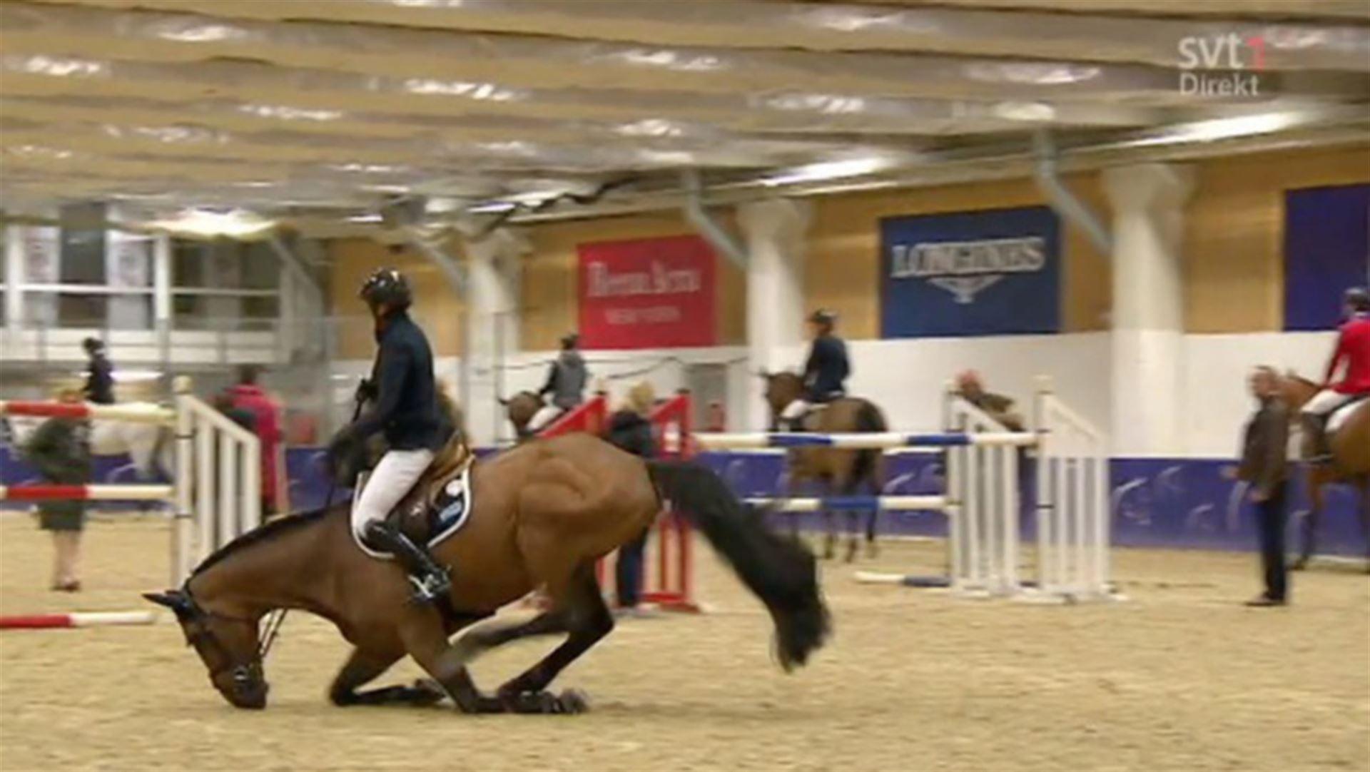 gothenburg_horse_show1