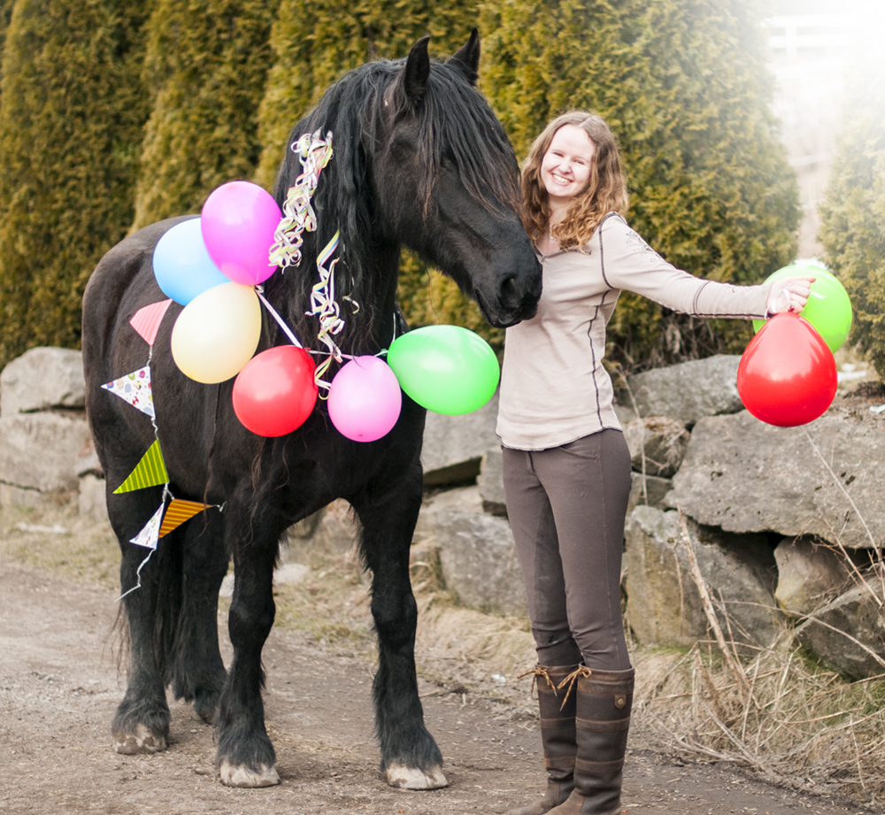 horse birthday3