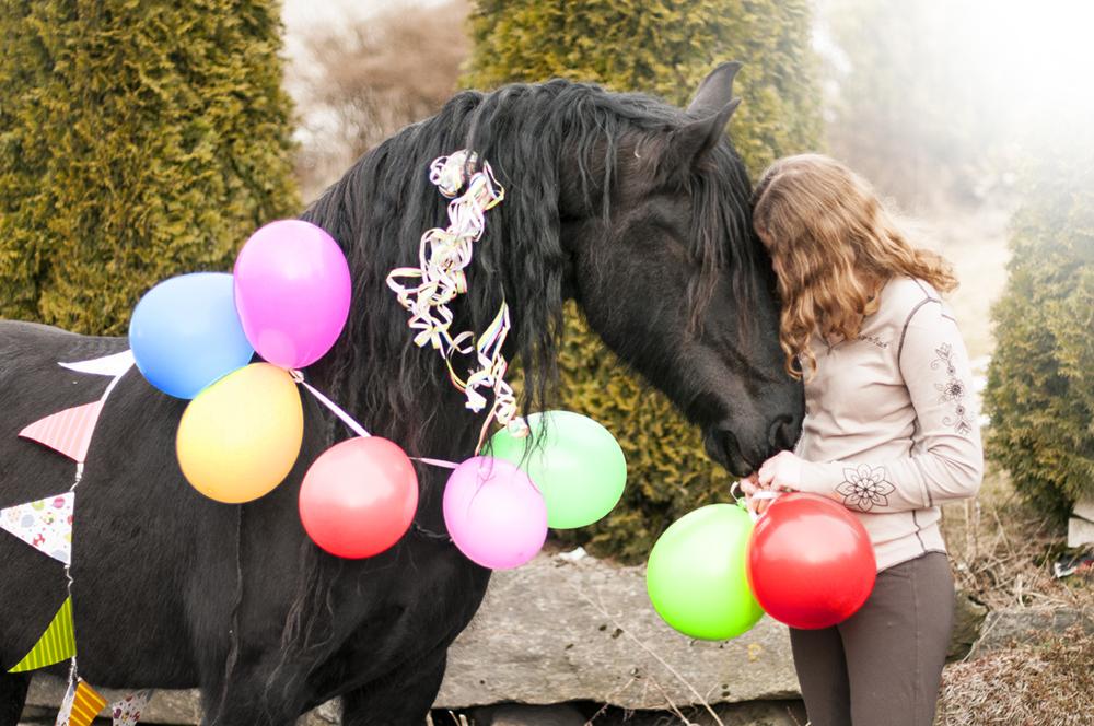 horse birthday7