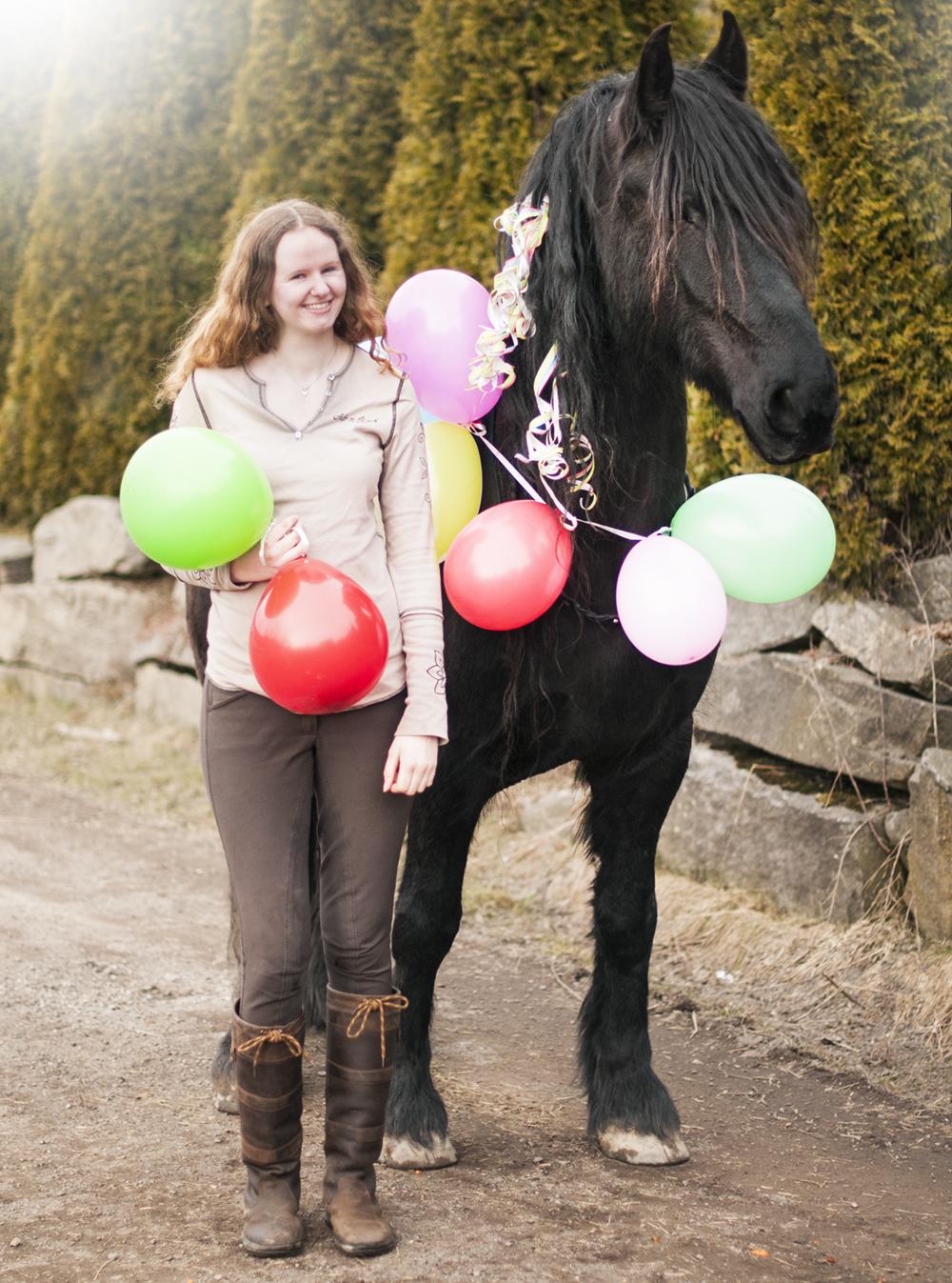 horse birthday9