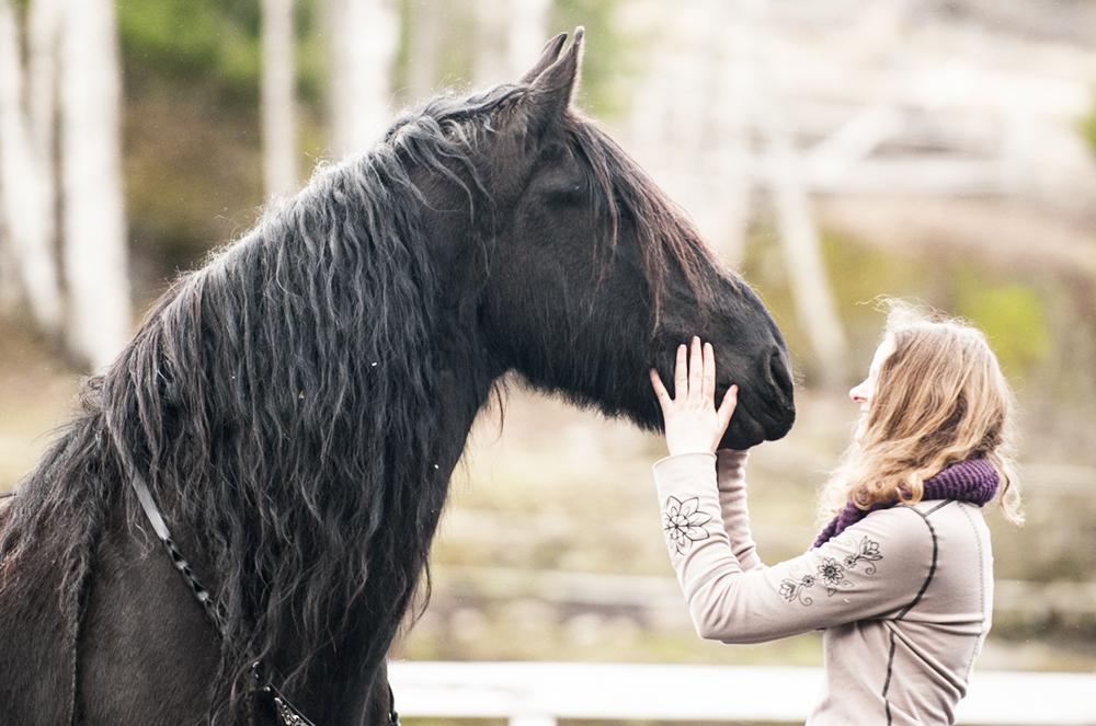 liberty horse1