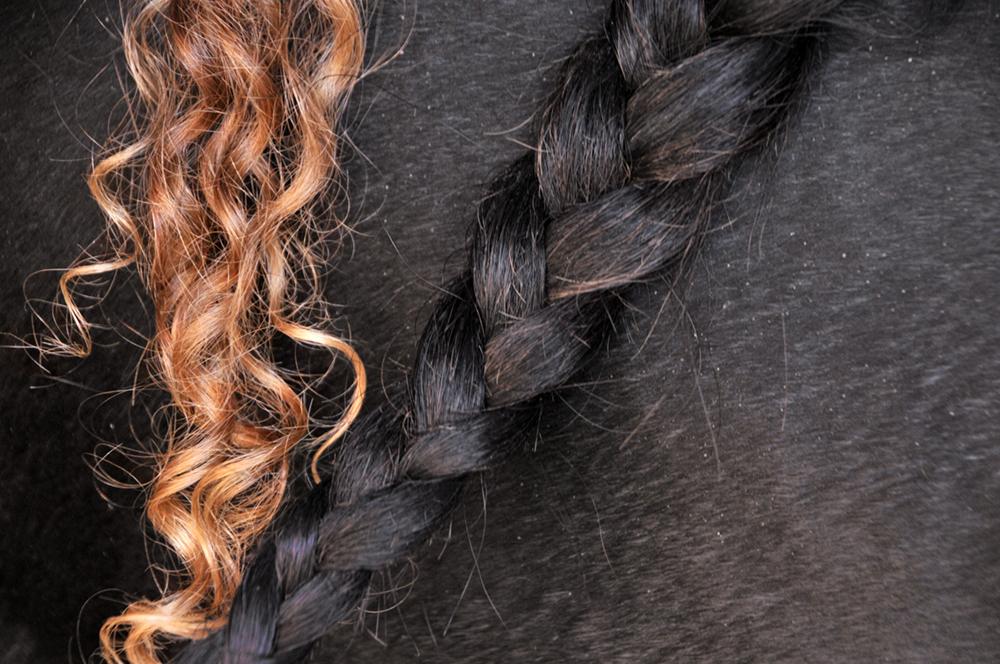 horse-braid