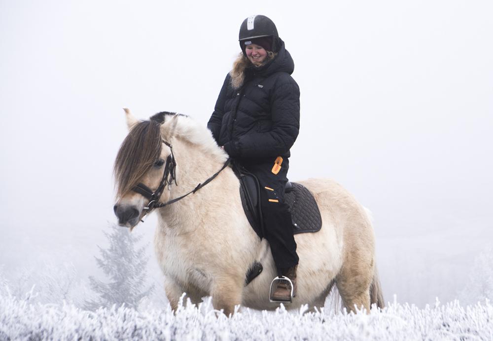 langedrag_fjordhorse_ride15