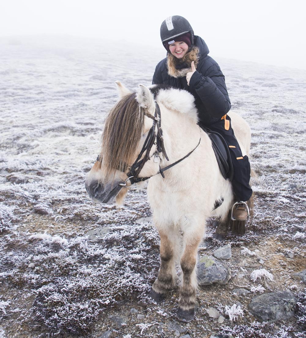 langedrag_fjordhorse_ride21