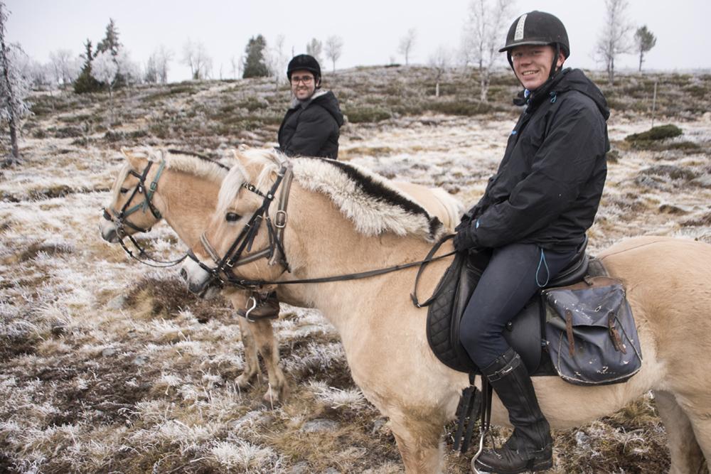 langedrag_fjordhorse_ride29