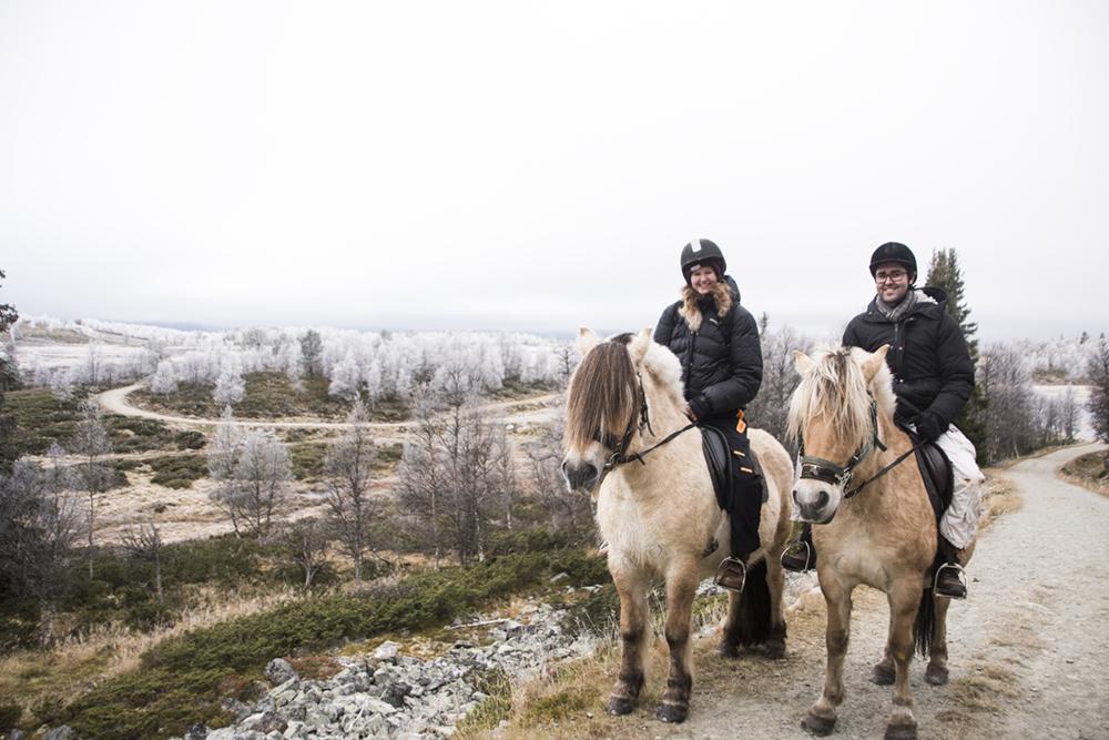 langedrag_fjordhorse_ride33