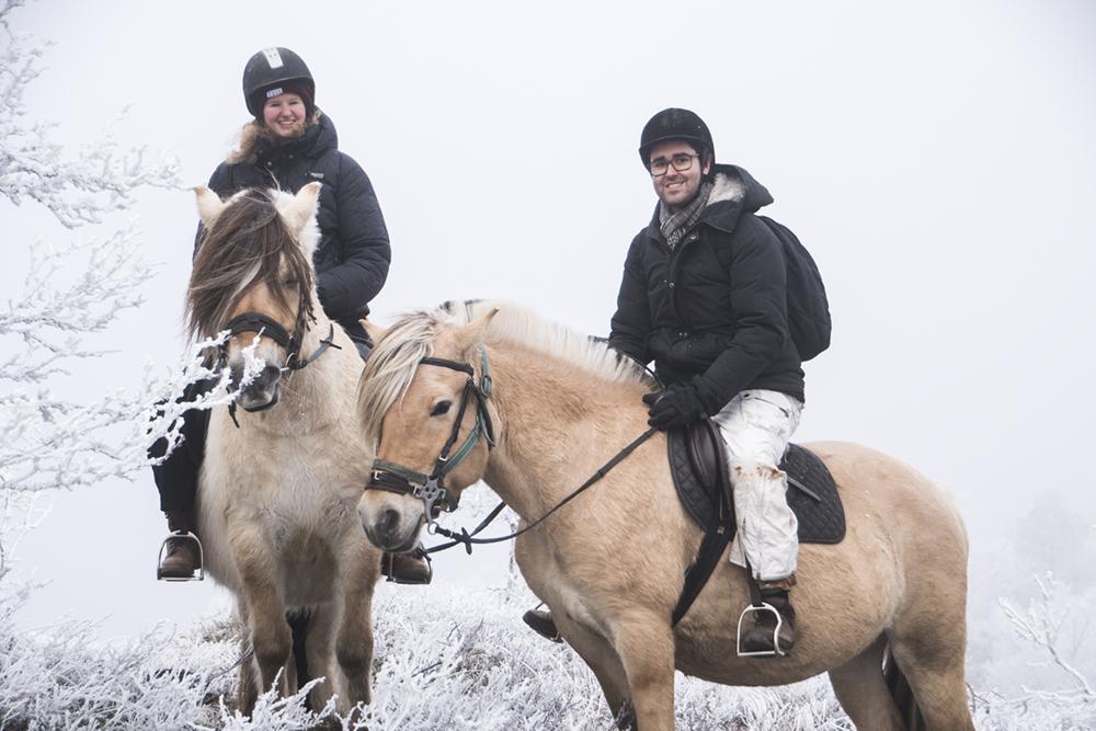 langedrag_fjordhorse_ride8