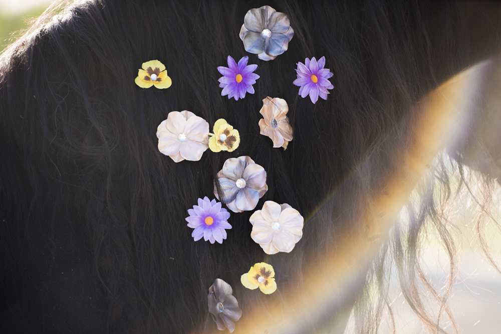 fleuracheval7