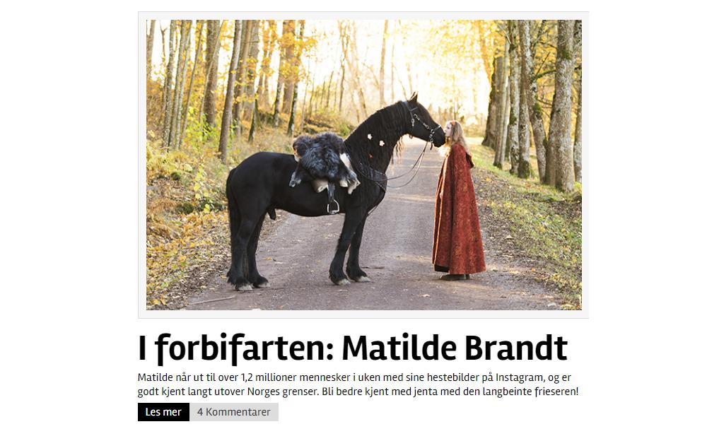 hest-no