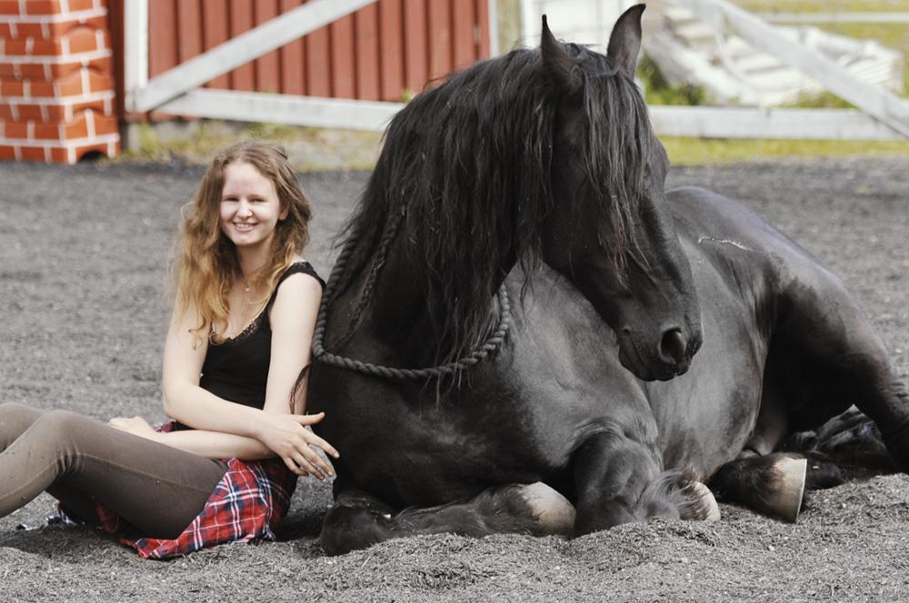 Teach Horse To Lie Down | Matilde Brandt