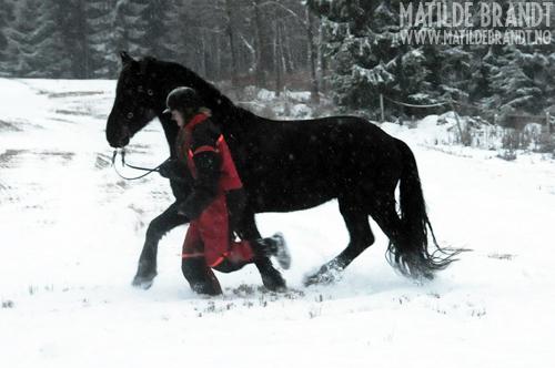 snøen dalte lett og fin